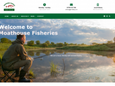 Catchy web design Starter website